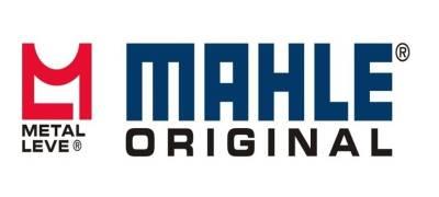 LEVE3 (Mahle-Metal Leve) - Indicadores, Cotação, Dividendos - Investidor10